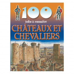 100 info of castles and knights